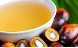 Россия резко сократила импорт пальмового масла